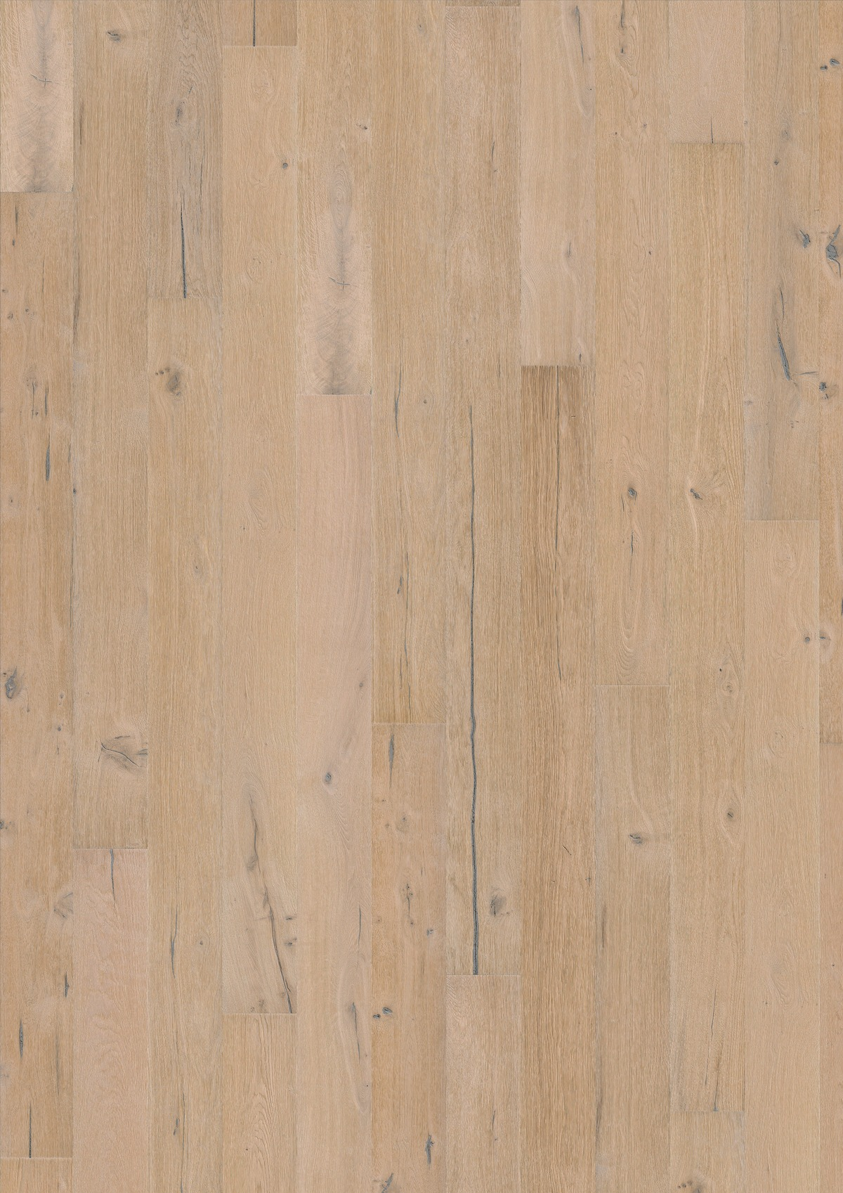 OAK STORY 187 ALPINE 5G. Фото �2