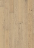 OAK CD WHITE OILED